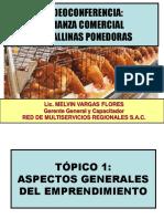 PONENCIA-GALLINAS