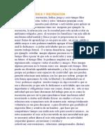 ENSAYO DE LUDICA Y RECREACION.docx
