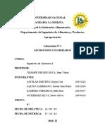 Informe 3 Lechos fijos y fluidizados