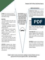 Diagrama V - Pesquisa Felipe Mendes