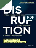 Disruption - Stephane Mallard.pdf