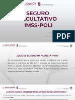 SeguroFacultativo.pdf