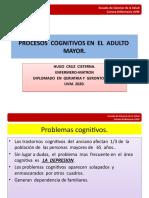 procesos  cognitivos  del  adulto  mayor