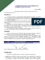 Corretivos - Alcarde Anda 04