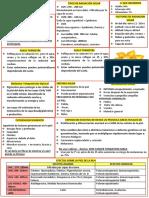 FOTOPROTECCION- RESUMEN (1).pdf