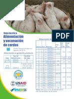 Alimentacion y vacunacion de cerdos
