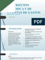 DESCRIPCION DINAMICA Y DE CUENTAS DE gastos.pptx