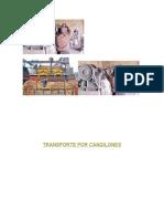 TRANSPORTE POR CANGILONES