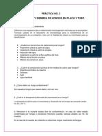 Cuestionario 2 y 3. lab micología
