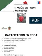 4.-TALLER PODA EN FRAMBUESA.pdf