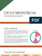 CICLO MENSTRUAL J