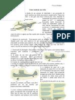 Como construir um aviao