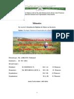 AMRAOUI-Mohamed.pdf