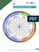 Roda dos 7 Níveis do Processo Evolutivo (RPP©️)