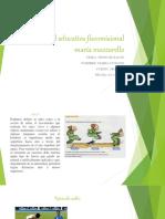 unidadeducativafiscomisionalmaramazzarello-151203044448-lva1-app6892.pdf