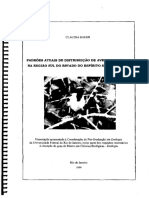 Bauer, C. 1999.pdf