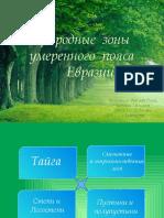 pptt34343