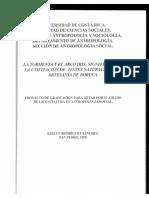 Rodriguez_LaTormenta_1995.pdf
