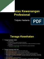 Batas-batas Kewenangan Profesional (Presentasi)