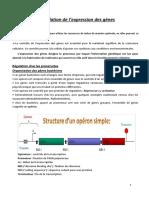 Cours 7 Régulation de l'expression des gènes