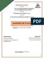 RAPPORT PIERROT.pdf
