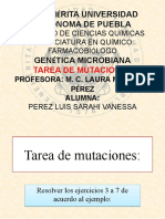 Tarea de mutaciones.pptx