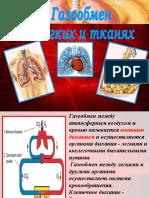Газообмен_в_лёгких_и_тканях