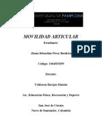 MOVILIDAD ARTICULAR