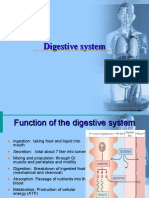 7 digestive system anatomy.ppt