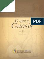 licao1_o_que_e_gnosis
