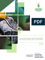 Amazonas em Mapas_4ª edição_ano 2020.pdf