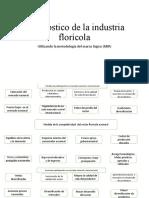DIAGNÓSTOCO DEL SECTOR FLORÍCOLA