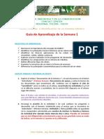 Guia_de_Aprendizaje_1[1]