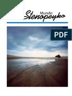 stenopeyko_N2_comp