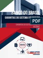 6562935-garantias-do-sistema-financeiro-nacional