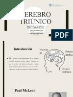 Cerebro triúnico