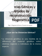 DISTANCIAS GENICAS