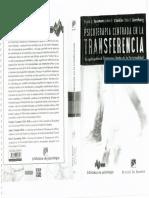 Psicoterapia centrada en la Trasferencia
