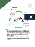 Modelo RSE Lorena M..pdf