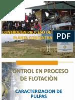 11 Control de Proceso de Flotación.pdf