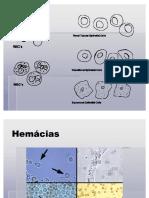 Atlas de Uroanalise.pdf
