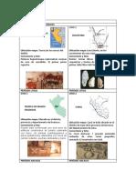 ficha Sitios Arqueológicos 3.docx