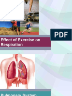 Effect of Exercise in Respiration