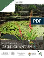 PMDZIBILCHANTUNCompleto.pdf