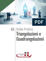 GUIDA TRIANGOLAZIONI IVA