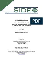 Resumen Ejecutivo Runatullo - Concepción.pdf