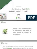 1.Instructivo_Palo.pptx