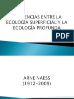 2.1. DIFERENCIAS ENTRE LA ECOLOGÍA SUPERFICIAL Y LA ECOLOGÍA PROFUNDA