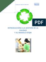 Manual EFQM.pdf