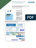 INSTRUCTIVO_PSE2020.pdf